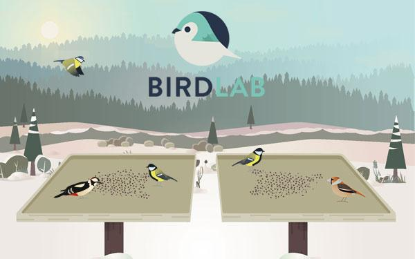 bird lab Dead bird lab submission form west nile virus surveillance routine  testing of birds for west nile virus is no longer conducted in new.
